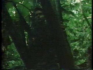 『地獄の黙示録』4:3版(VHS)