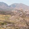 浅間山と桜 (2016年4月9日)