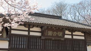 懐古園 三の門 (2016年4月11日)