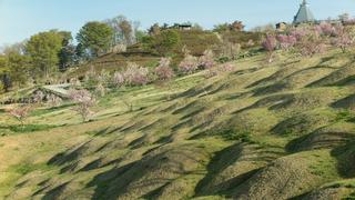 飯綱山公園【小諸市】(2018年4月22日)